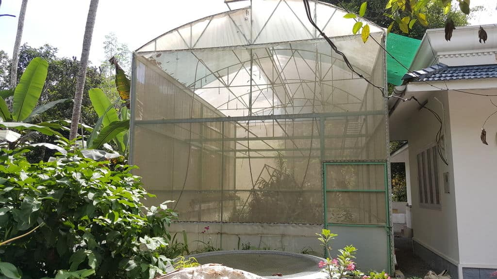 The Greenery Greenhouse Idea