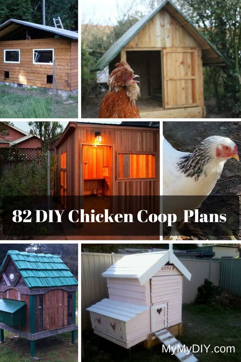 82 DIY Chicken Coop Plans