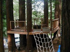 38 Brilliant Tree House Plans