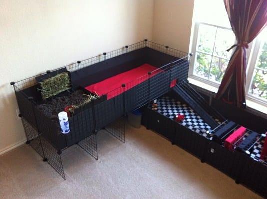 diy guinea pig cage designs