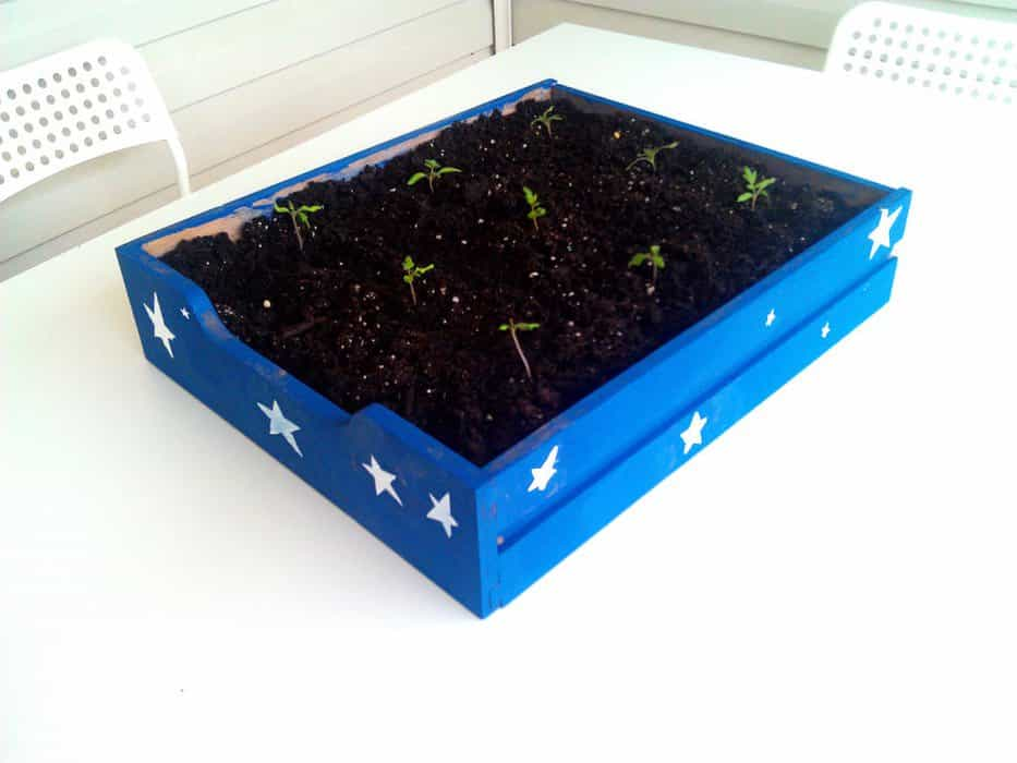 blue planter box