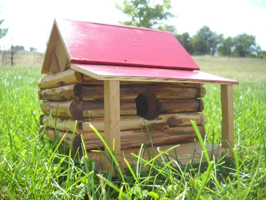 diy birdhouse plan