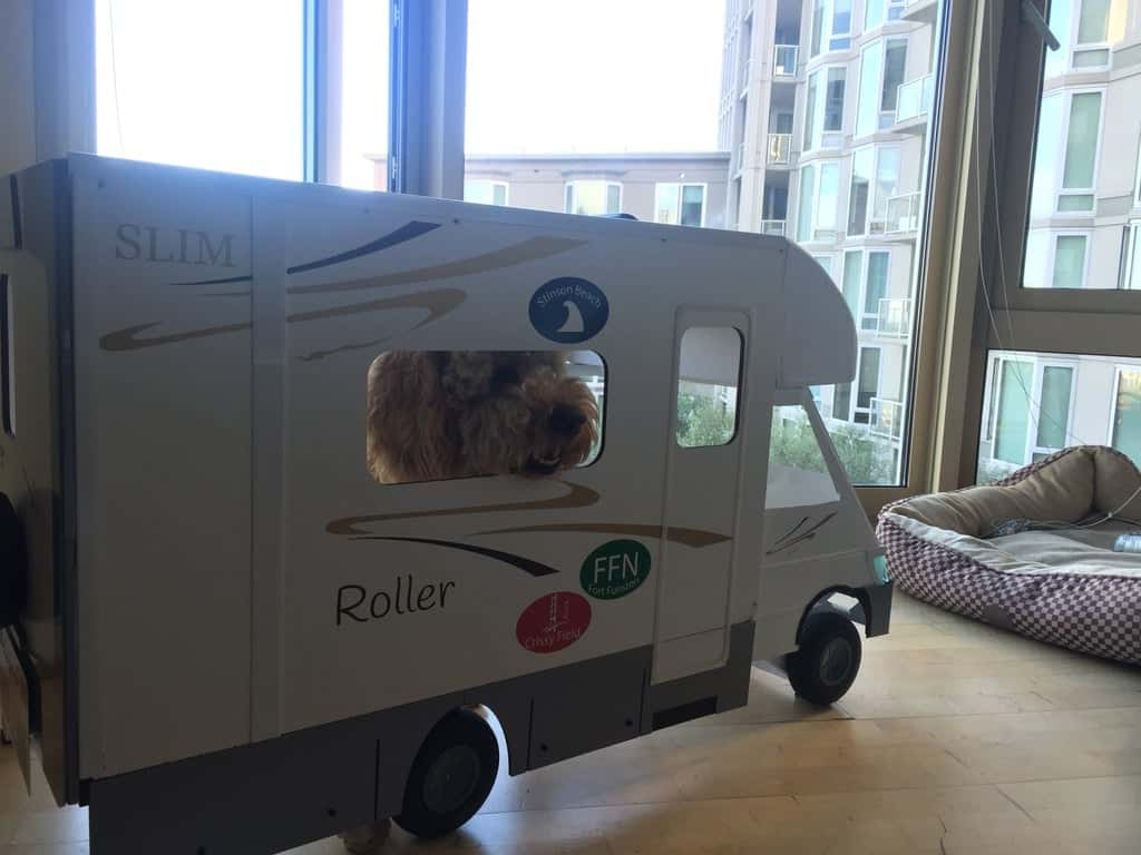 A Dog House for the Dog Who Loves the Open Road