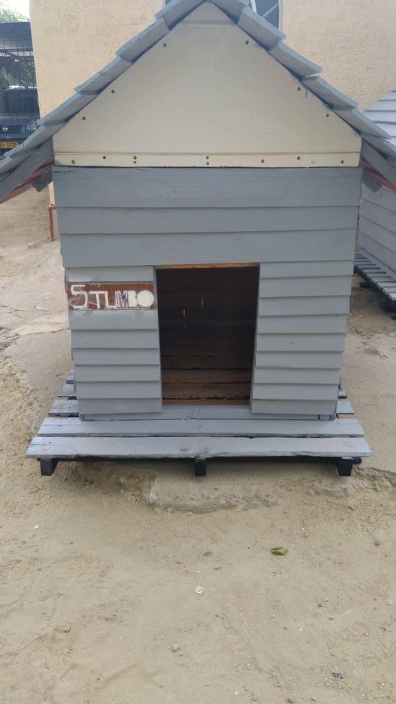 Cheap Dog House