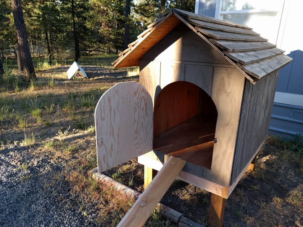 DIY From Dog House to Chicken Coop