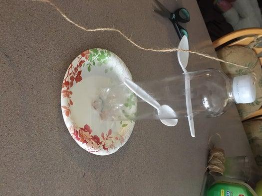 paper plate bird feeder